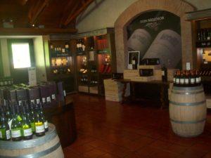 Tour Viñas y Bodegas de Chile, Bodegas y viñedos en Chile